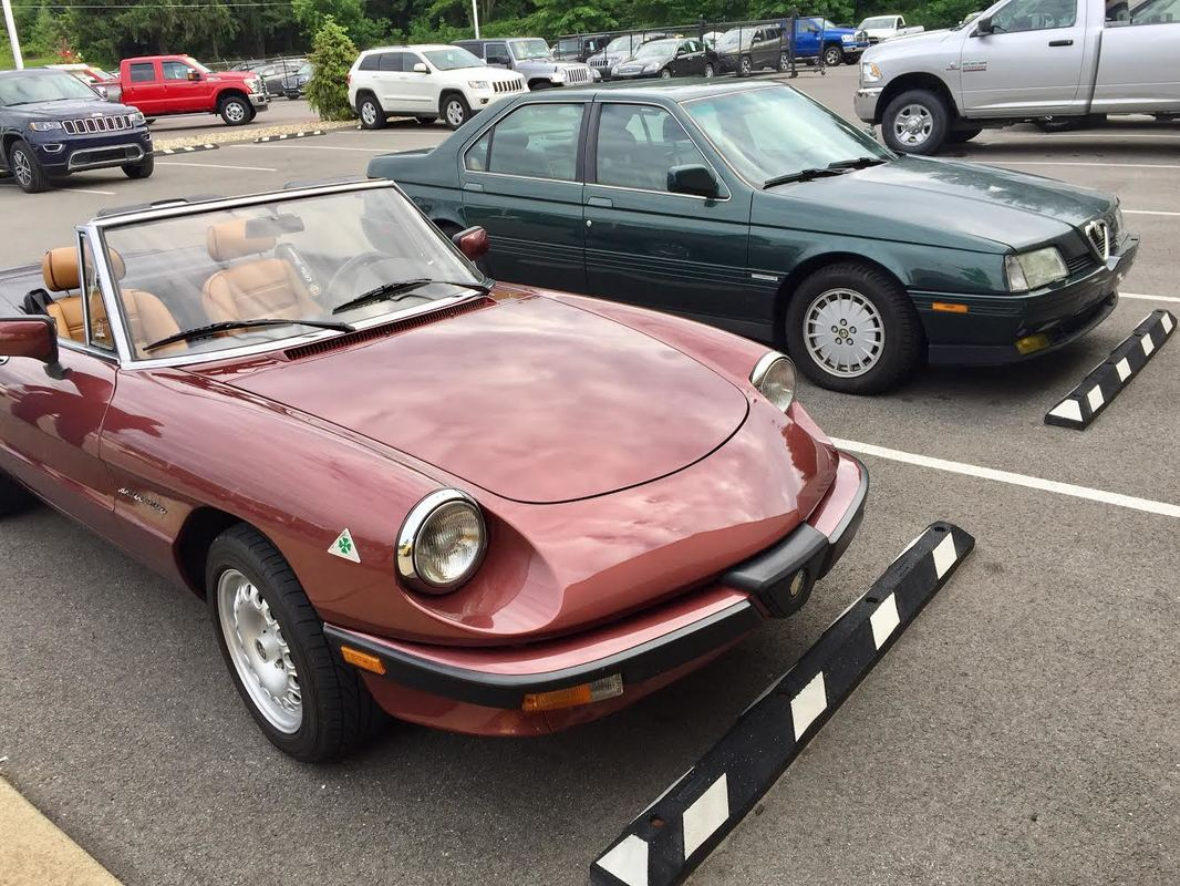 Alfa Romeo Spider Veloce 164L Club Meeting